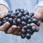 ways to cut grocery budget