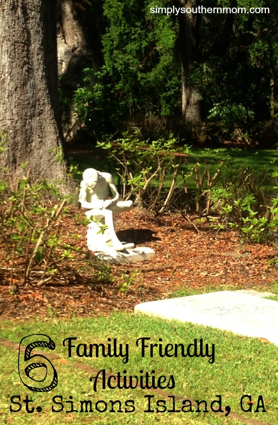 6 Family Friendly Activities St. Simons Island Pin for Post