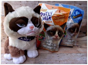 A Grumpy Cat Birthday Party & Giveaway