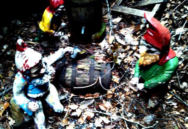 hidden gnomes around the park