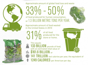 Four Ways to Reduce Food Waste and Save Money