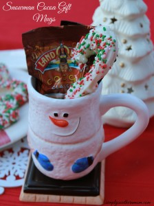 Homemade Christmas Gift: Hot Cocoa Mug with Peppermint Stir Sticks