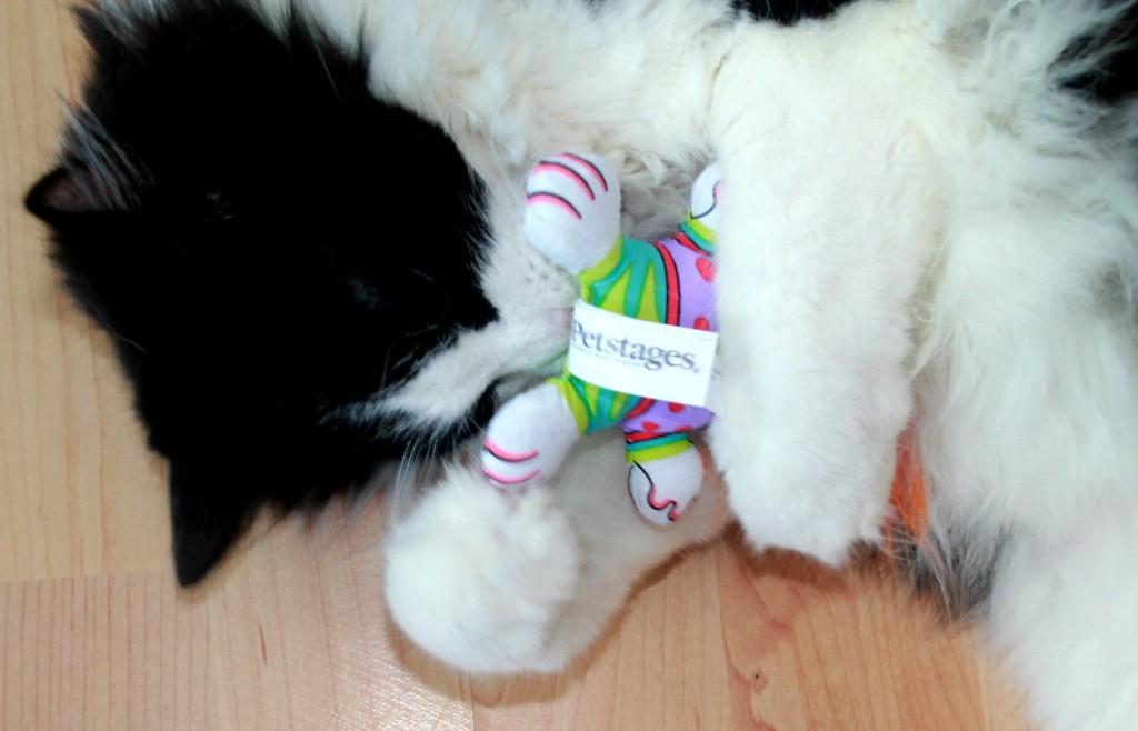 Petstages madcap Big Hair Kitty