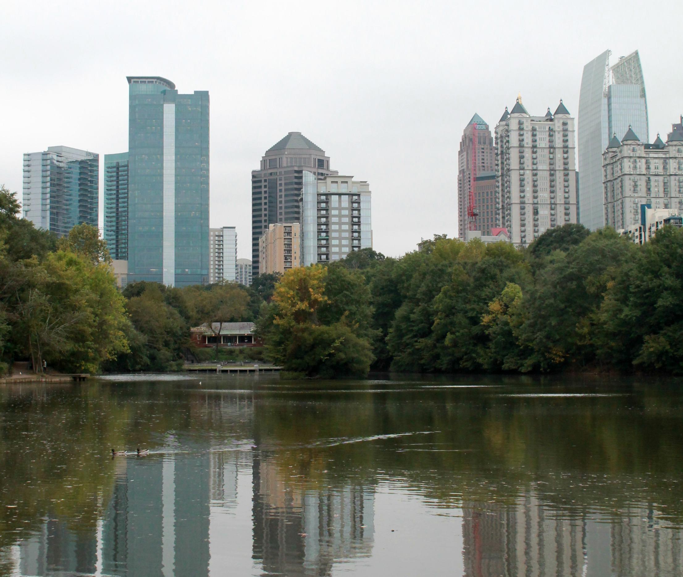 Atlanta Botanical Garden Skyline Gardens