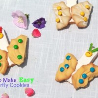 how-to-make-easy-butterfly-cookies--compressor