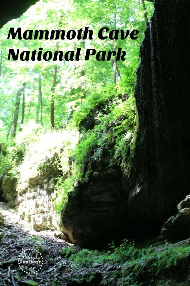 Have you explored Mammoth Cave National Park in P