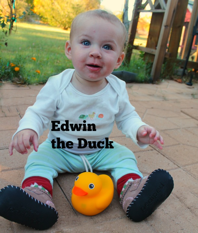 edwin-the-duck