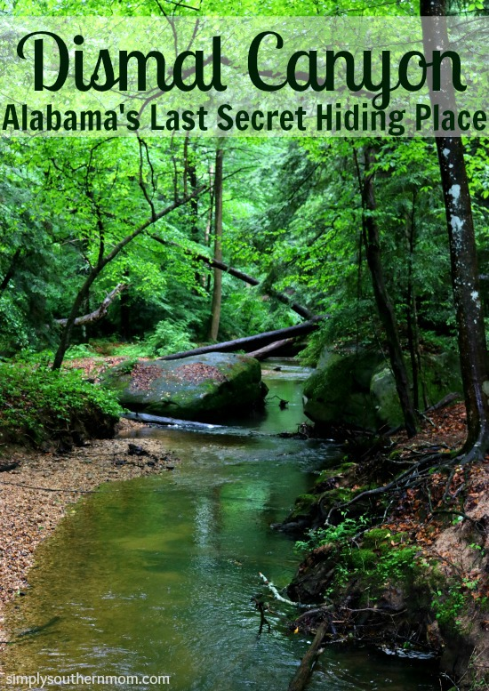Dismal Canyon Alabama's Last Secret Hiding Place