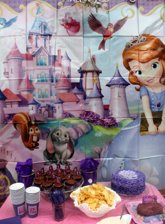 Princess Sofia backdrop