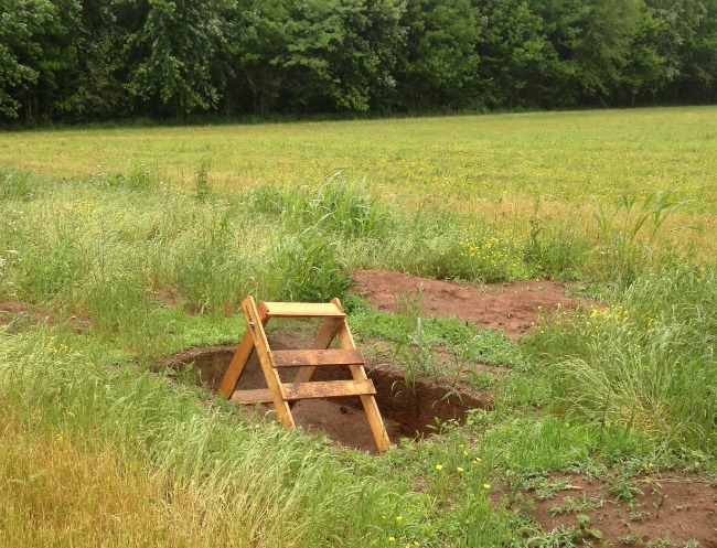 dig site at cypress cove farms