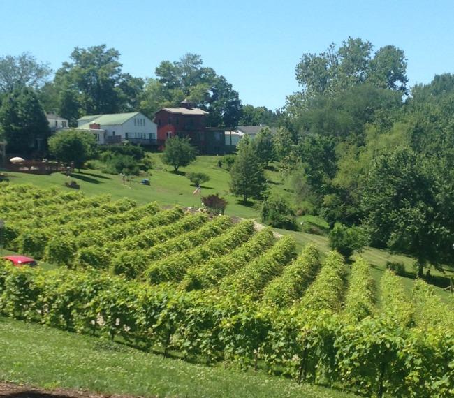Stonehill Winery