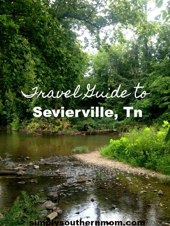 Sevierville Pin