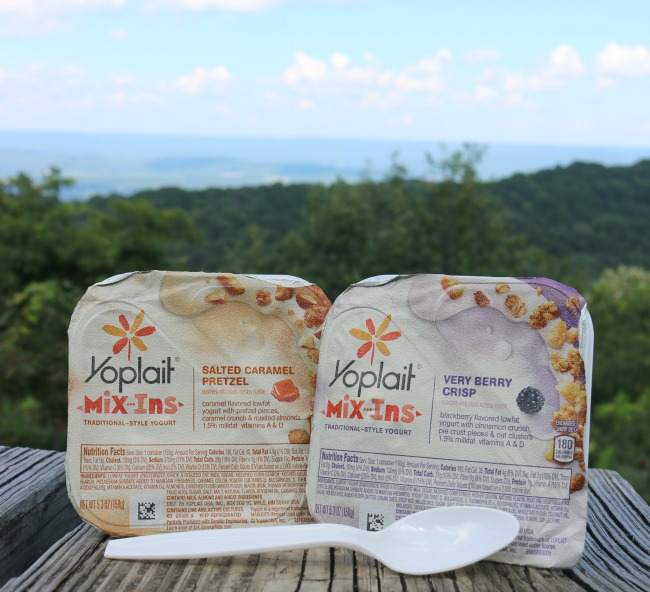 Yoplait Mix-Ins