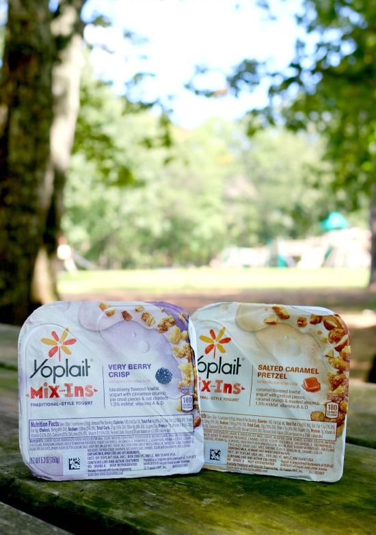 yoplait mix ins 5