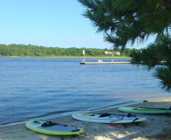 Tony Siglavani Surf School