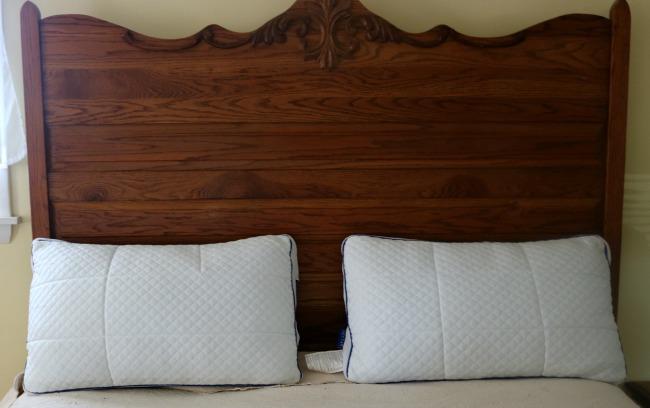 Sleep Nectar Pillows