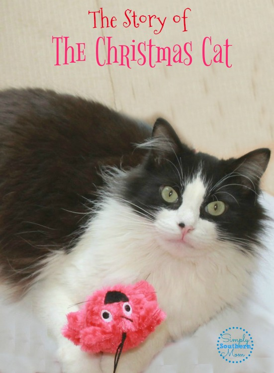 The Story of the Christmas Cat