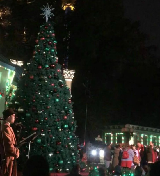 lighting of christmas tree