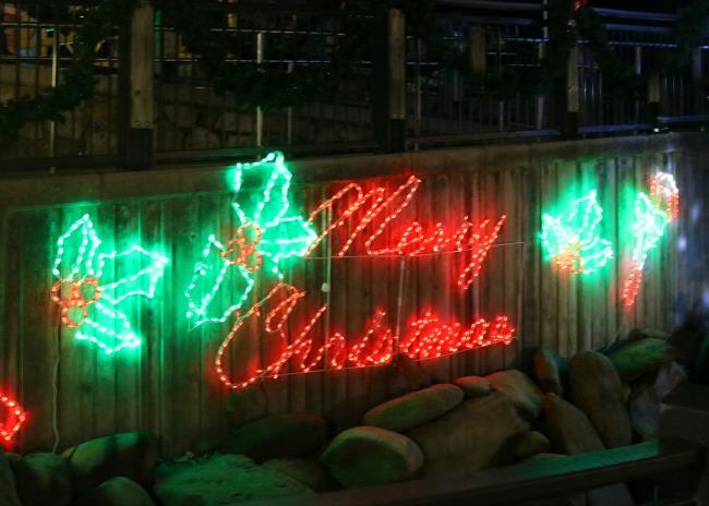 Shadricks Christmas Wonderland